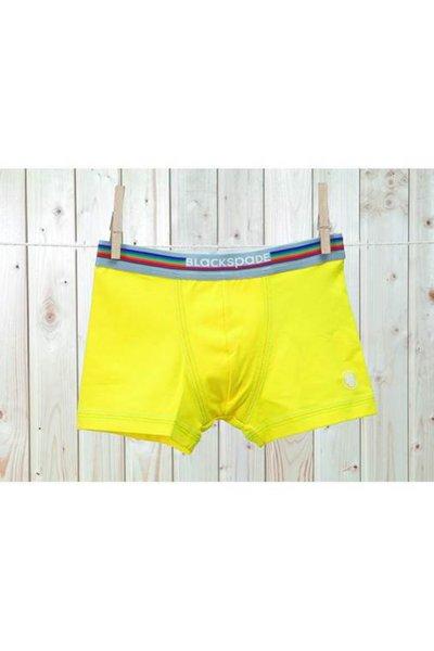 Erkek Çocuk Colours Boxer 9399